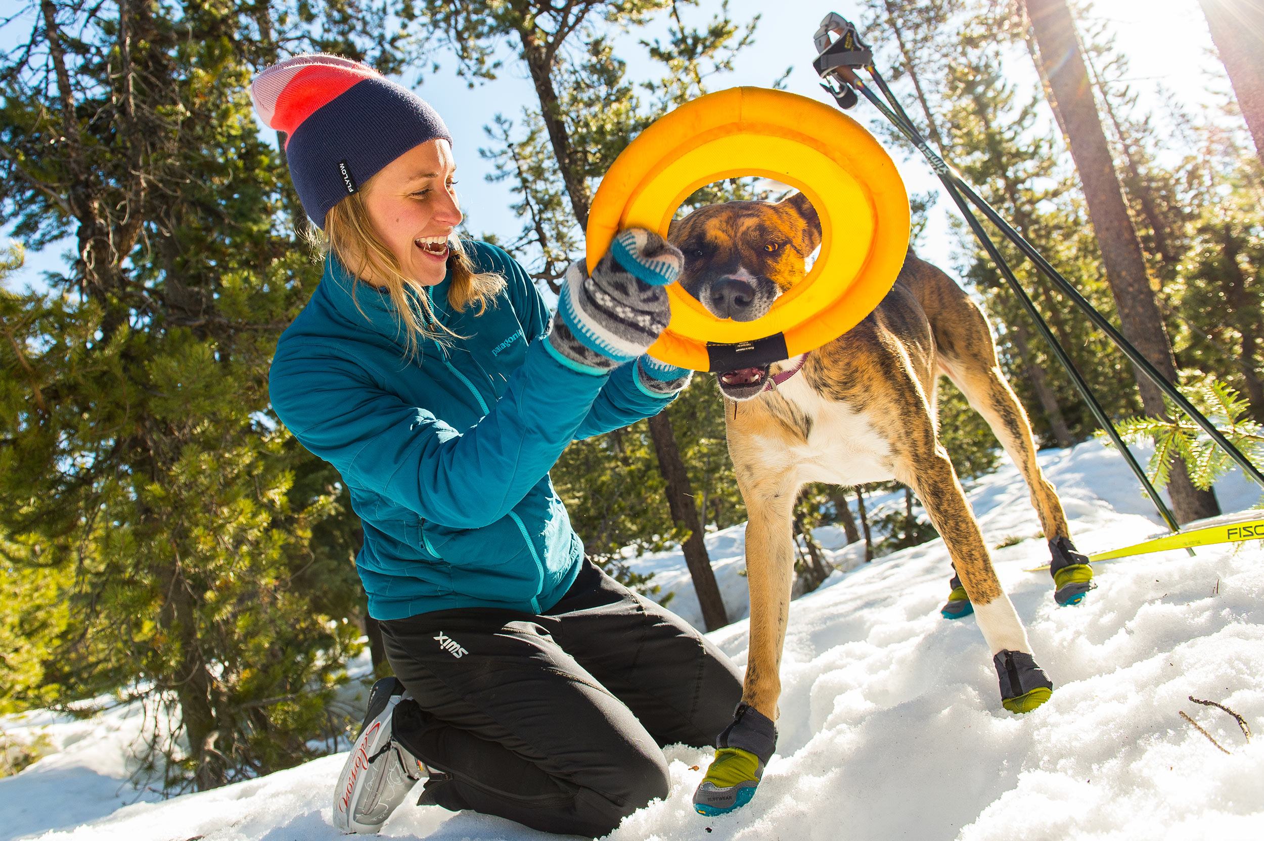 Outdoor-Winter-Dog-Photography-Playtime