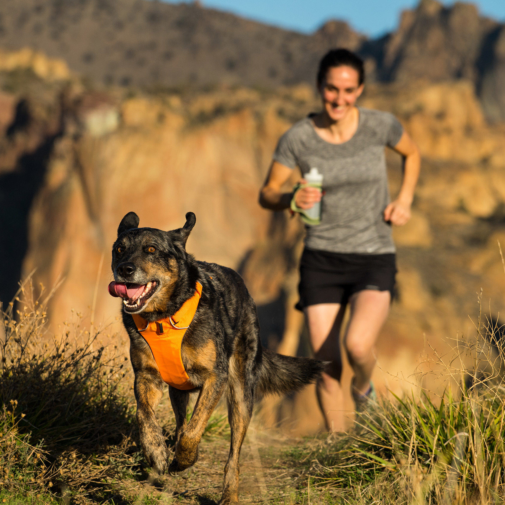 Running-Dog-Outdoor-Photography-Smith-Rock-Oregon